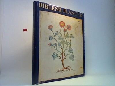 Biblens planter
