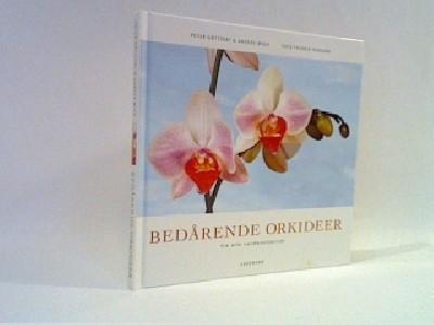 Bedårende orkideer